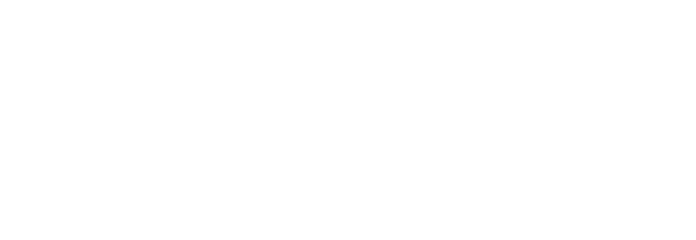 team-it-group-logo-weiss